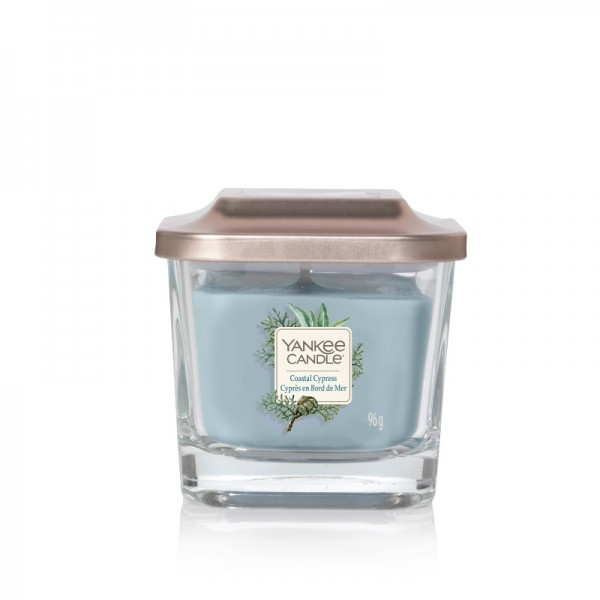 Yankee Candle Duftkerze Elevation  «Coastal Cypress» klein (small 96g)