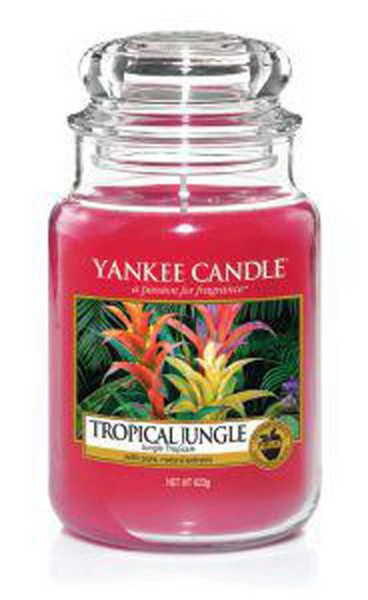 Yankee Candle Duftkerze «Tropical Jungle» gross (large Jar 623g)
