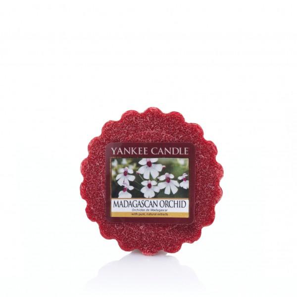 Yankee Candle Duftkerze «Madagascan Orchid» Wax Melt
