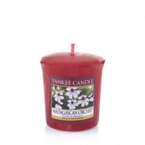 Yankee Candle Duftkerze «Madagascan Orchid» Votivkerze